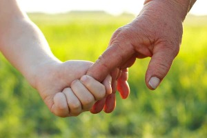 bigstock-hands-of-young-child-and-old-s-27262055